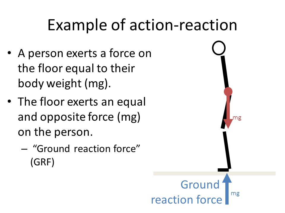 Example of action-reaction A person exerts a force on the floor equal to their body weight (mg). The floor exerts an equal and opposite force (mg) on