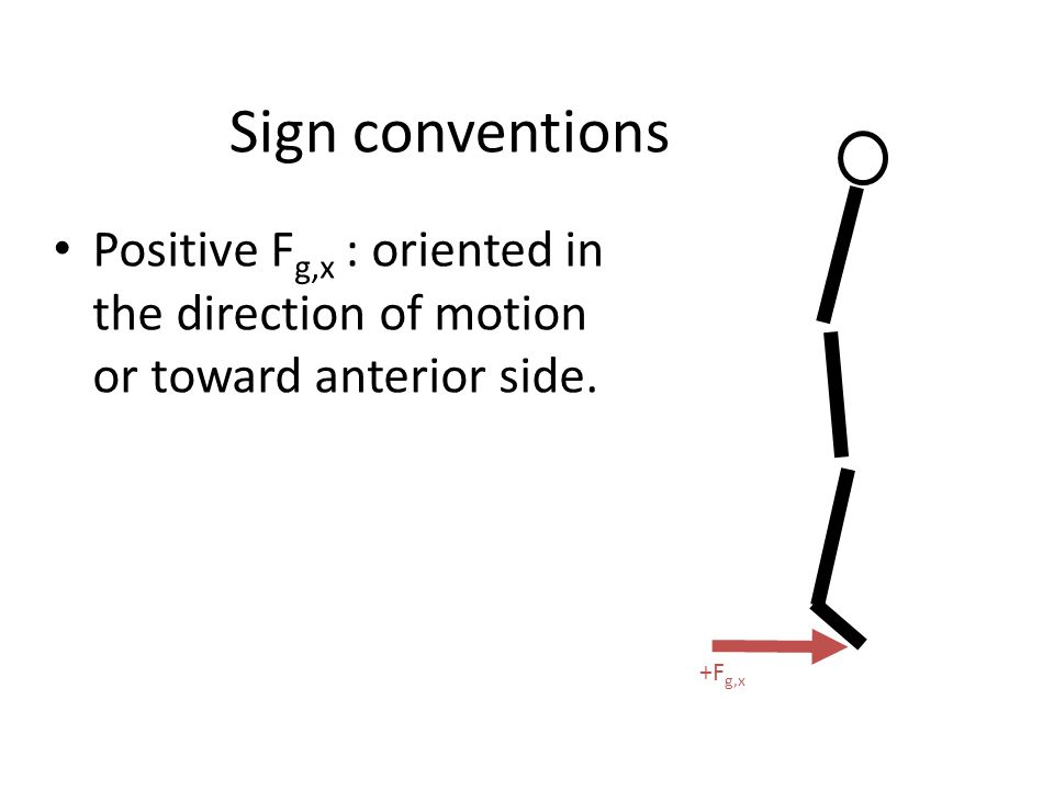 Sign conventions Positive F g,x : oriented in the direction of motion or toward anterior side. +F g,x