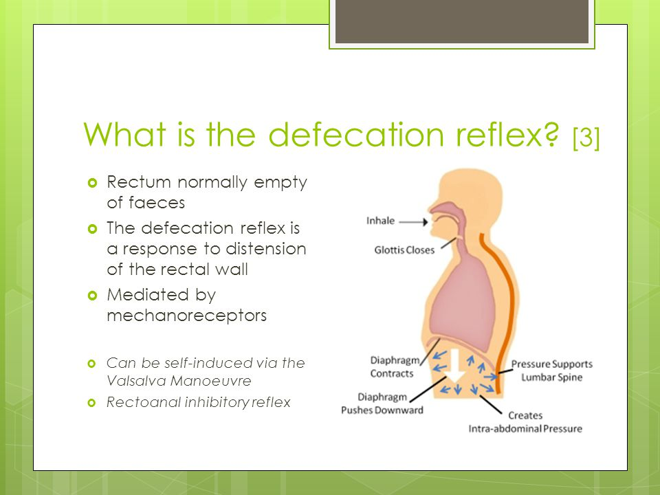 What is the defecation reflex.