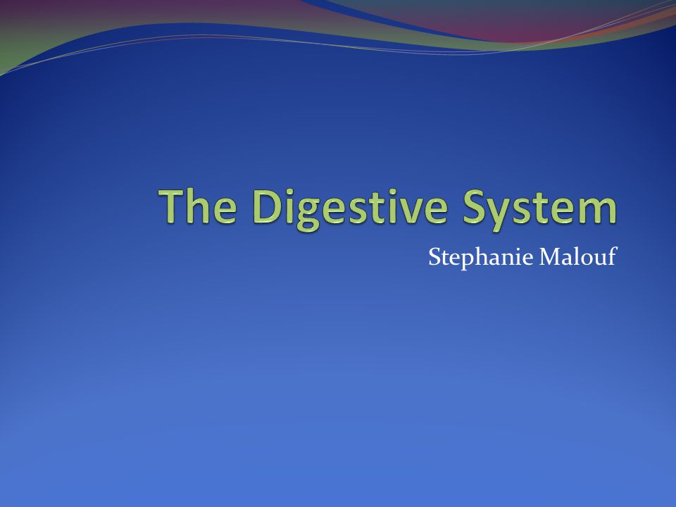 Continued… The Digestive System (March 12, 2007).Online Biology Book.