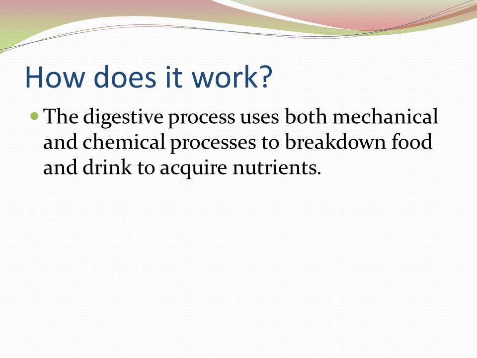 How does it work? The digestive process uses both mechanical and chemical processes to breakdown food and drink to acquire nutrients.