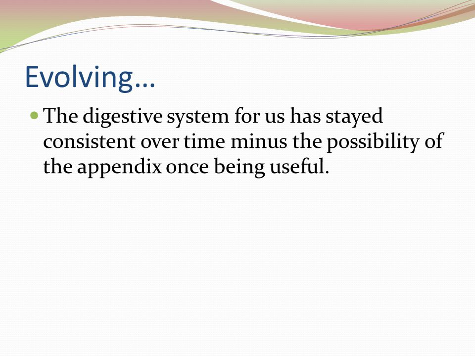 Evolving… The digestive system for us has stayed consistent over time minus the possibility of the appendix once being useful.