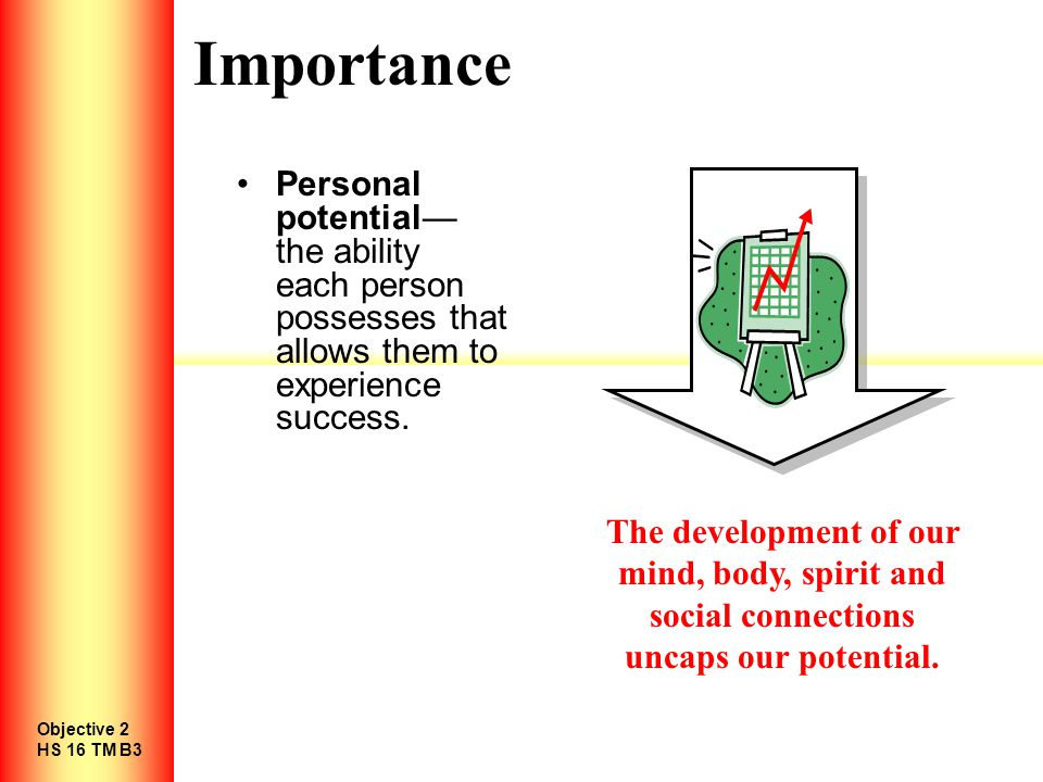 Importance Personal potential— the ability each person possesses that allows them to experience success.