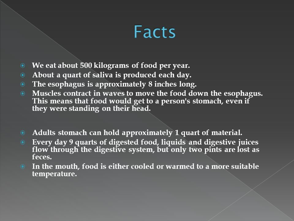  We eat about 500 kilograms of food per year.  About a quart of saliva is produced each day.