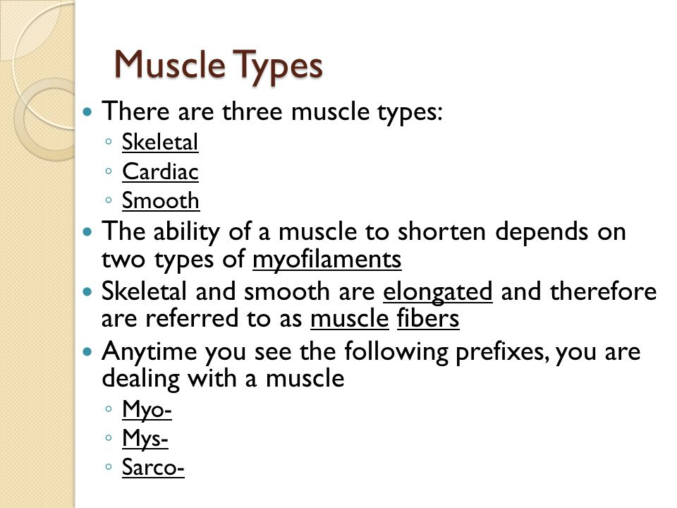 Skeletal Muscle Composed of skeletal muscle fibers Also known as striated (striped) muscle and voluntary muscle They are cigar shaped, multinucleated, and large (some are nearly a foot in length) Can contract rapidly with great force, but tire easily and need to rest after periods of activity