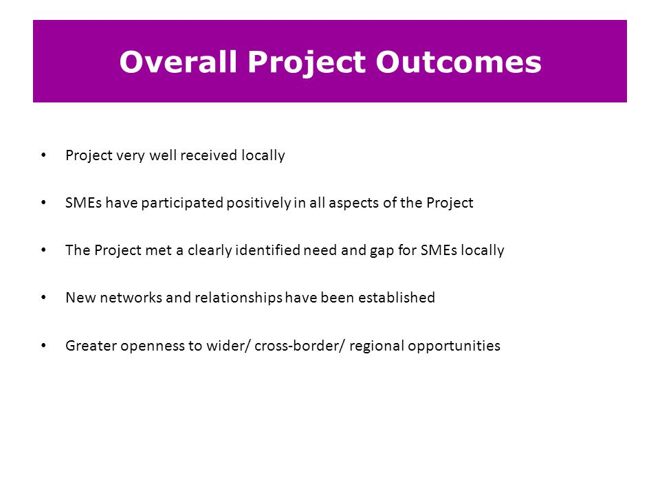 Overall Project Outcomes Project very well received locally SMEs have participated positively in all aspects of the Project The Project met a clearly