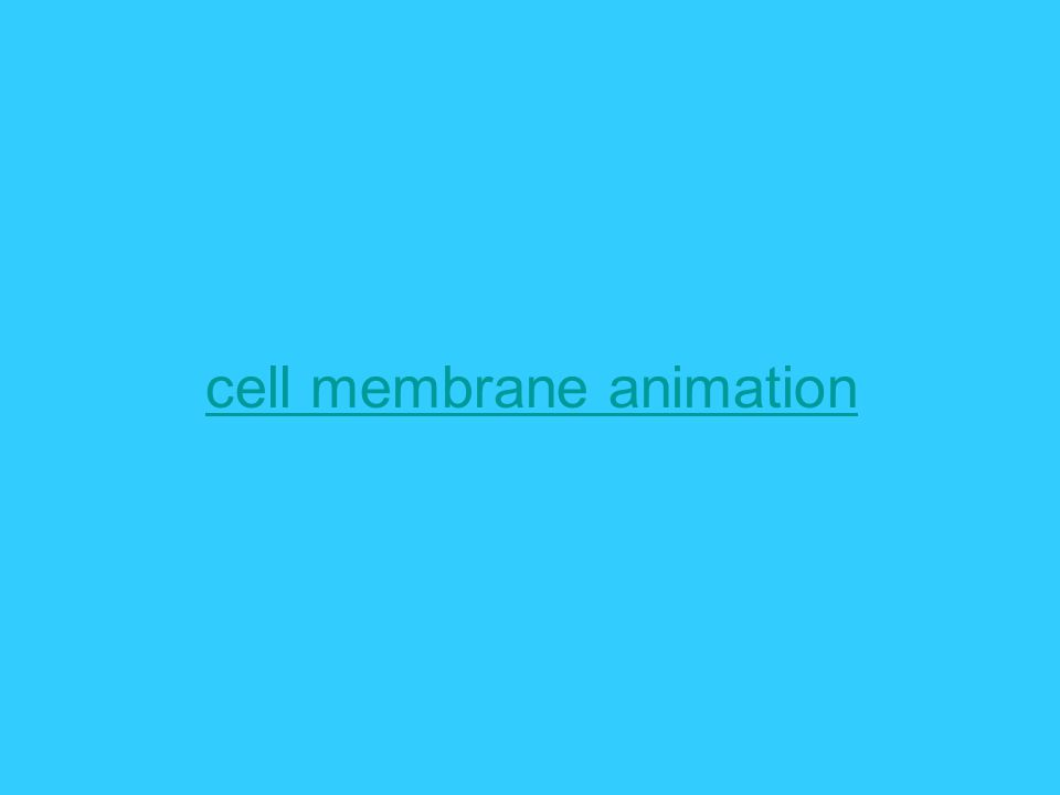 cell membrane animation
