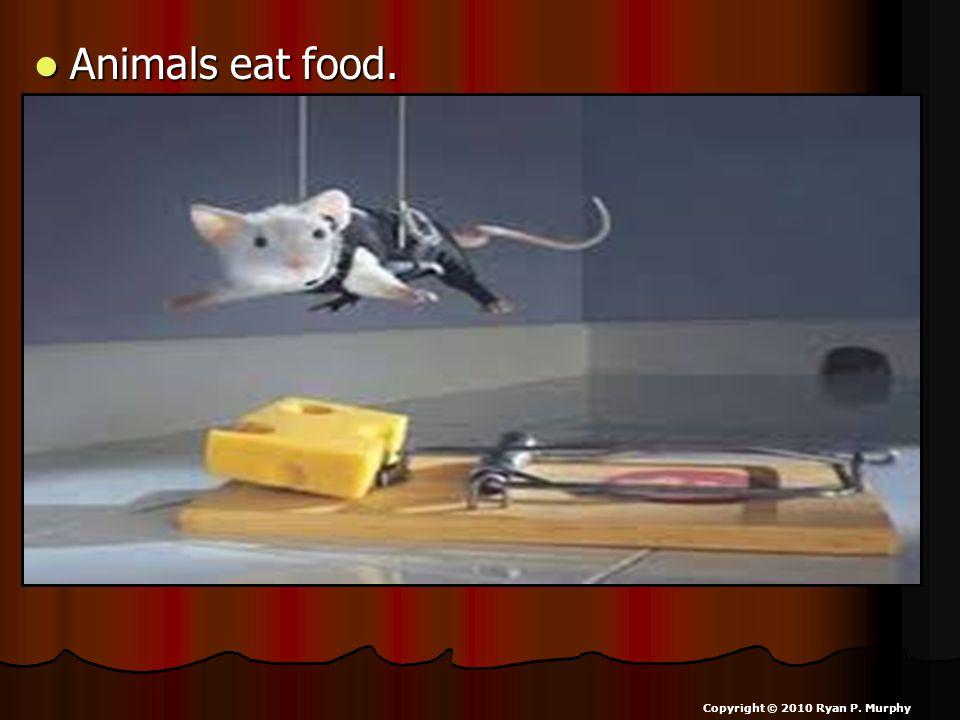 Animals eat food. Animals eat food. Copyright © 2010 Ryan P. Murphy