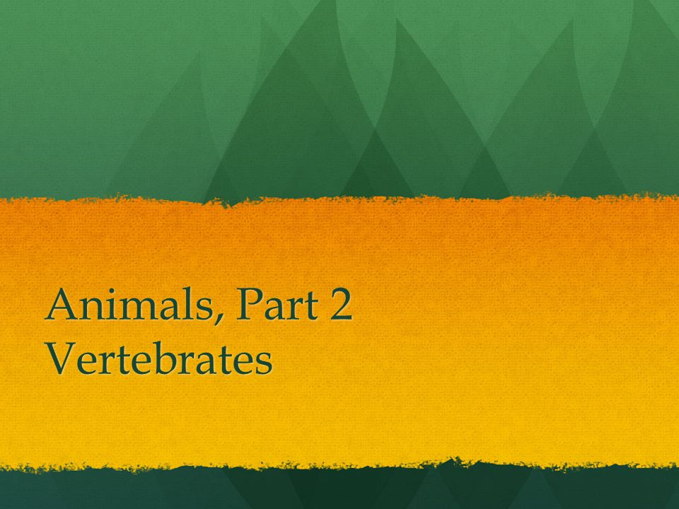 MAMMALS Mammals are endothermic (warm-blooded).