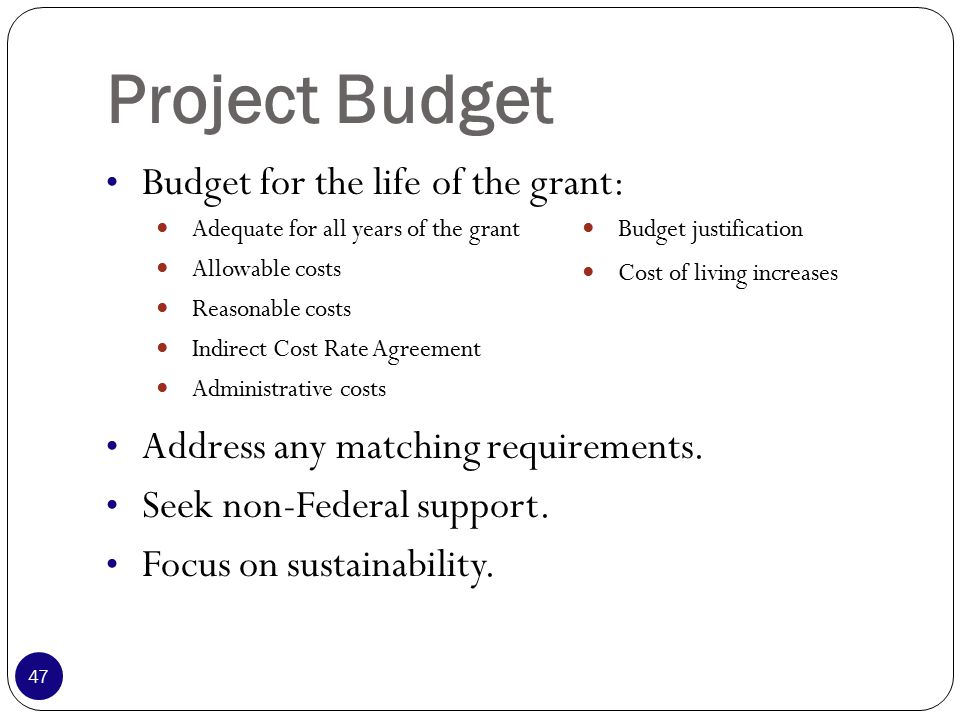 Project Budget Budget for the life of the grant: Address any matching requirements.