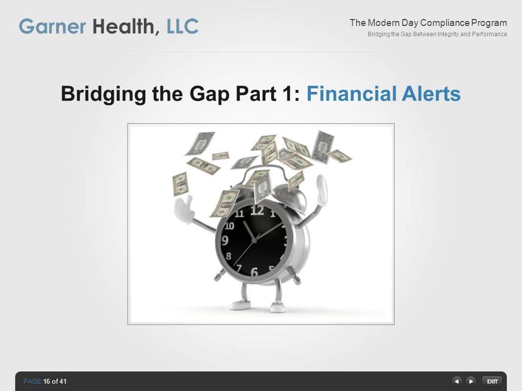 PAGE: The Modern Day Compliance Program Bridging the Gap Between Integrity and Performance Bridging the Gap Part 1: Financial Alerts 16 of 41