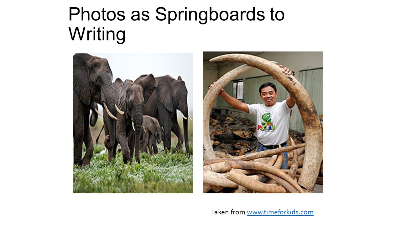Photos as Springboards to Writing Taken from www.timeforkids.comwww.timeforkids.com