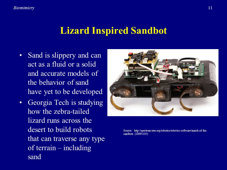 11Biomimicry Lizard Inspired Sandbot Sand is slippery and can act as a fluid or a solid and accurate models of the behavior of sand have yet to be developed Georgia Tech is studying how the zebra-tailed lizard runs across the desert to build robots that can traverse any type of terrain – including sand Source: http://spectrum.ieee.org/robotics/robotics-software/march-of-the- sandbots (20091105)