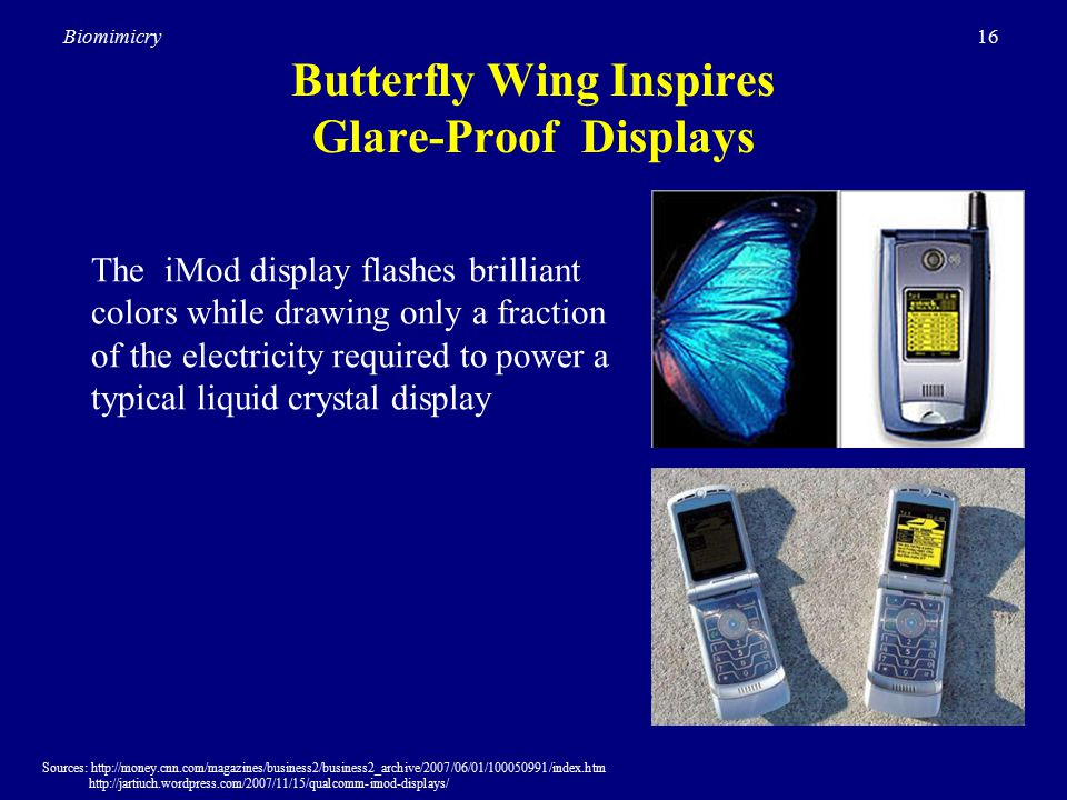 16Biomimicry Butterfly Wing Inspires Glare-Proof Displays Sources: http://money.cnn.com/magazines/business2/business2_archive/2007/06/01/100050991/index.htm http://jartiuch.wordpress.com/2007/11/15/qualcomm-imod-displays/ The iMod display flashes brilliant colors while drawing only a fraction of the electricity required to power a typical liquid crystal display