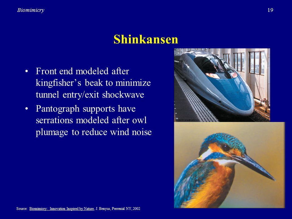 19Biomimicry Shinkansen Front end modeled after kingfisher's beak to minimize tunnel entry/exit shockwave Pantograph supports have serrations modeled after owl plumage to reduce wind noise Source: Biomimicry: Innovation Inspired by Nature, J.