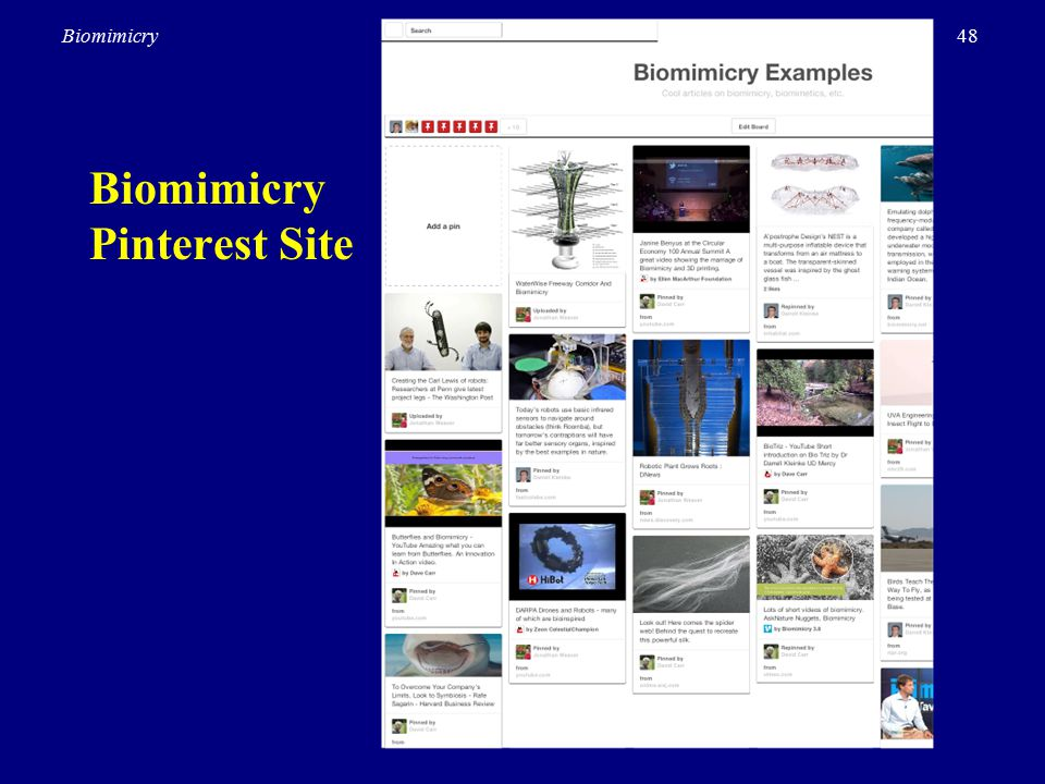 48Biomimicry Biomimicry Pinterest Site