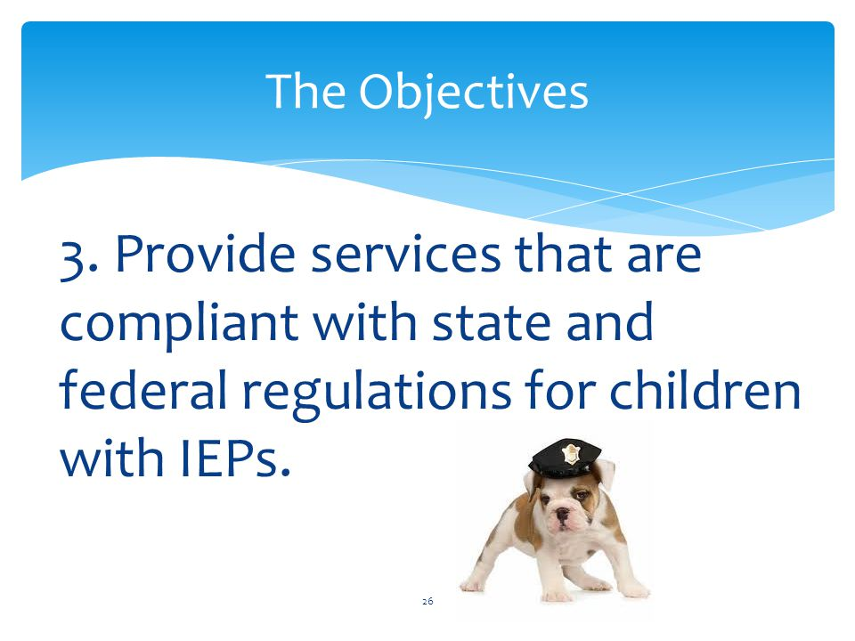 3. Provide services that are compliant with state and federal regulations for children with IEPs.