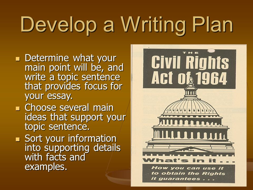 Develop a Writing Plan Determine what your main point will be, and write a topic sentence that provides focus for your essay.