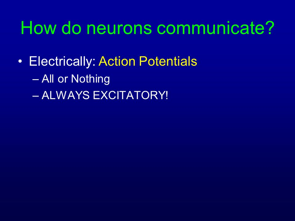 How do neurons communicate? Electrically: Action Potentials –All or Nothing –ALWAYS EXCITATORY!