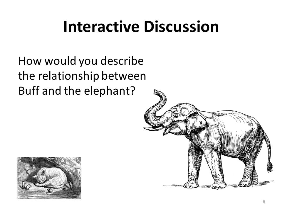 Interactive Discussion From the elephant keeper's perspective, what were the advantages or disadvantages of keeping Buff.