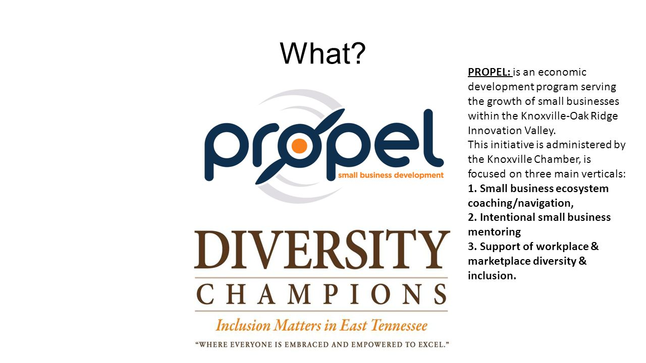 What? PROPEL: is an economic development program serving the growth of small businesses within the Knoxville-Oak Ridge Innovation Valley. This initiat