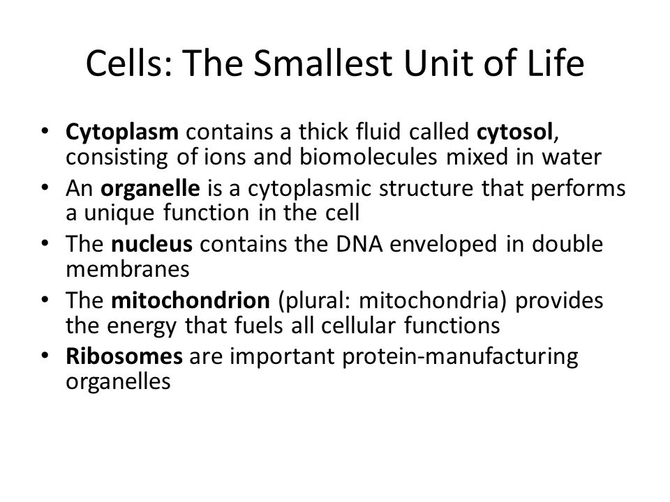 Cells: The Smallest Unit of Life Cytoplasm contains a thick fluid called cytosol, consisting of ions and biomolecules mixed in water An organelle is a