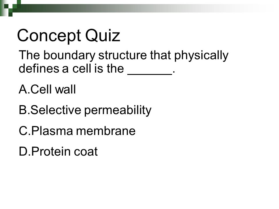 The boundary structure that physically defines a cell is the. A.Cell wall B.Selective permeability C.Plasma membrane D.Protein coat Concept Quiz