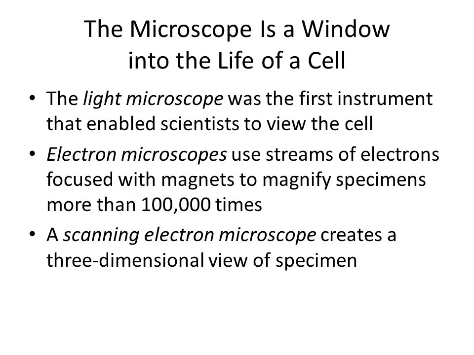The Microscope Is a Window into the Life of a Cell The light microscope was the first instrument that enabled scientists to view the cell Electron mic