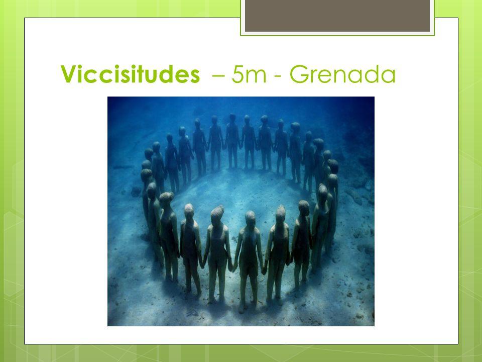Viccisitudes – 5m - Grenada