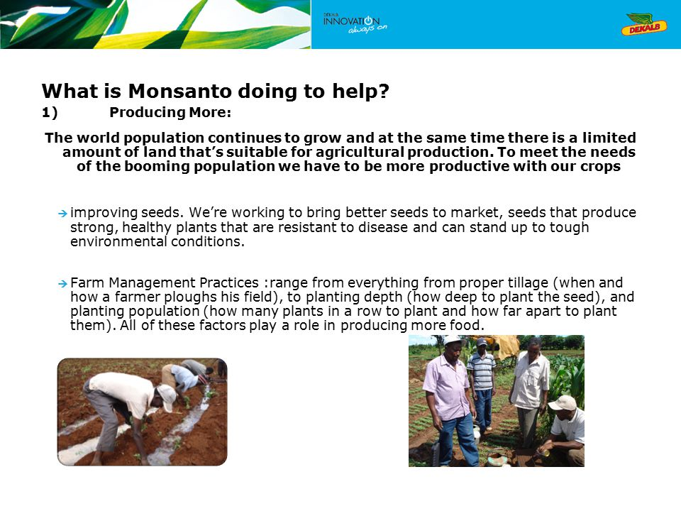What is Monsanto doing to help.