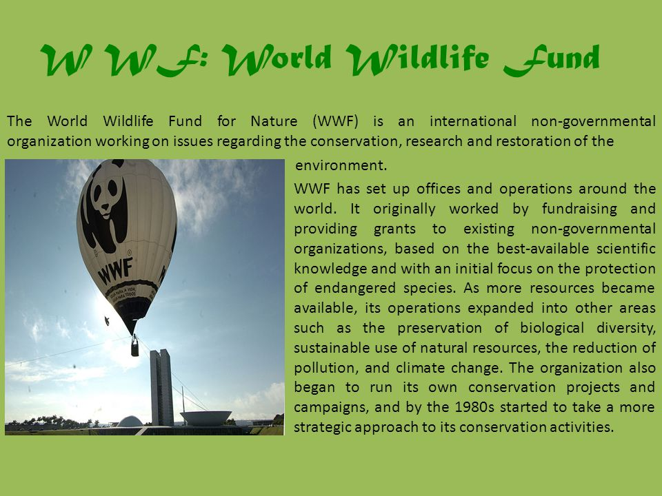 W WF: World Wildlife Fund The World Wildlife Fund for Nature (WWF) is an international non-governmental organization working on issues regarding the conservation, research and restoration of the environment.