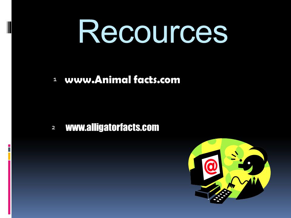 Recources www.Animal facts.com 1 2 www.alligatorfacts.com