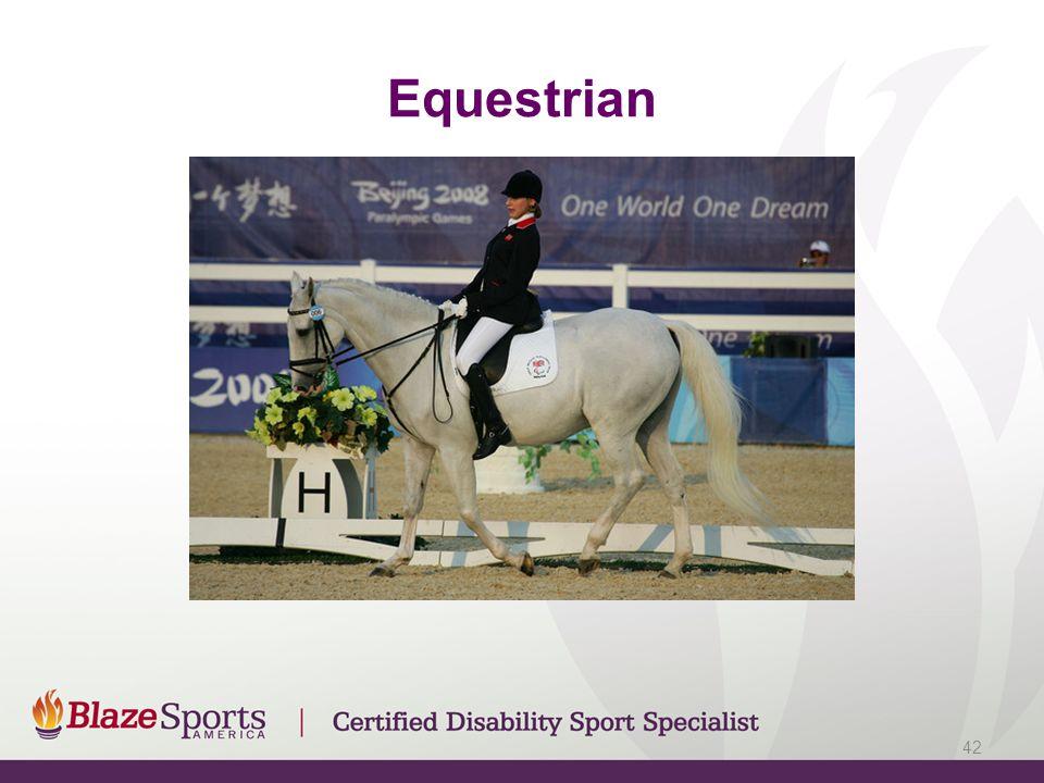 Equestrian 42