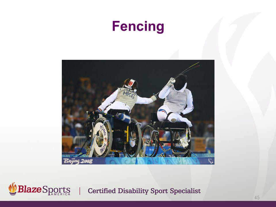 Fencing 45