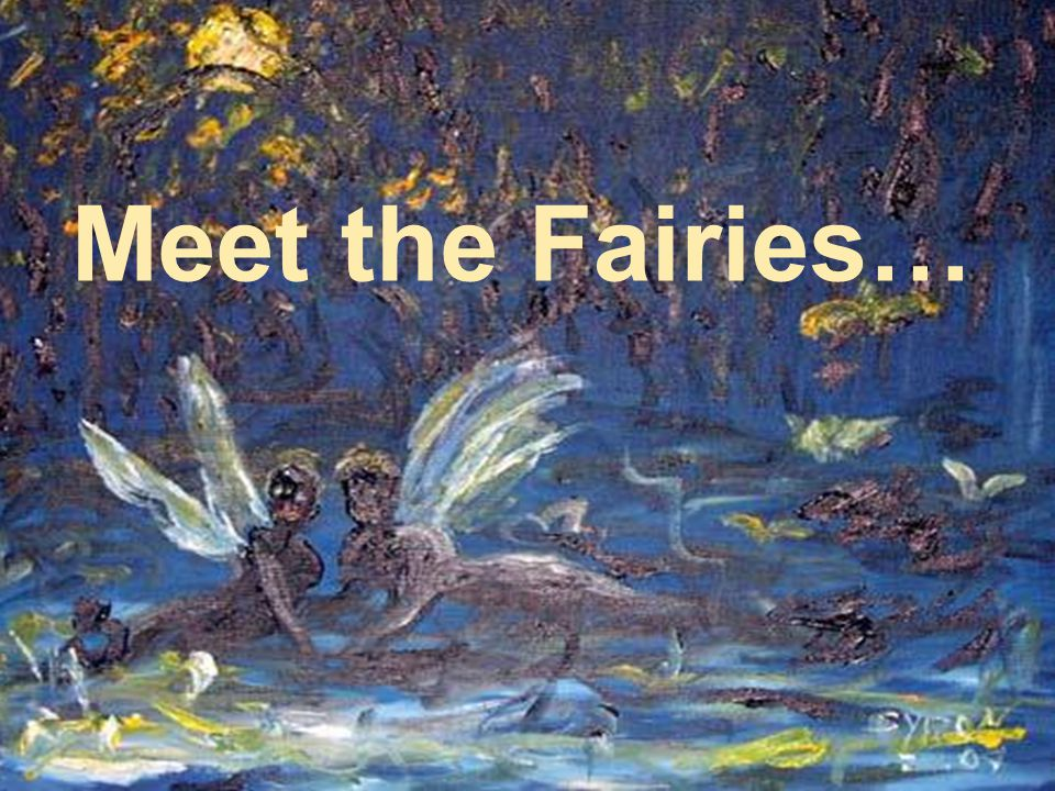 Meet the Fairies…