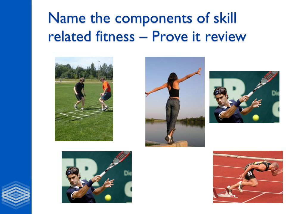 Name the components of skill related fitness – Prove it review
