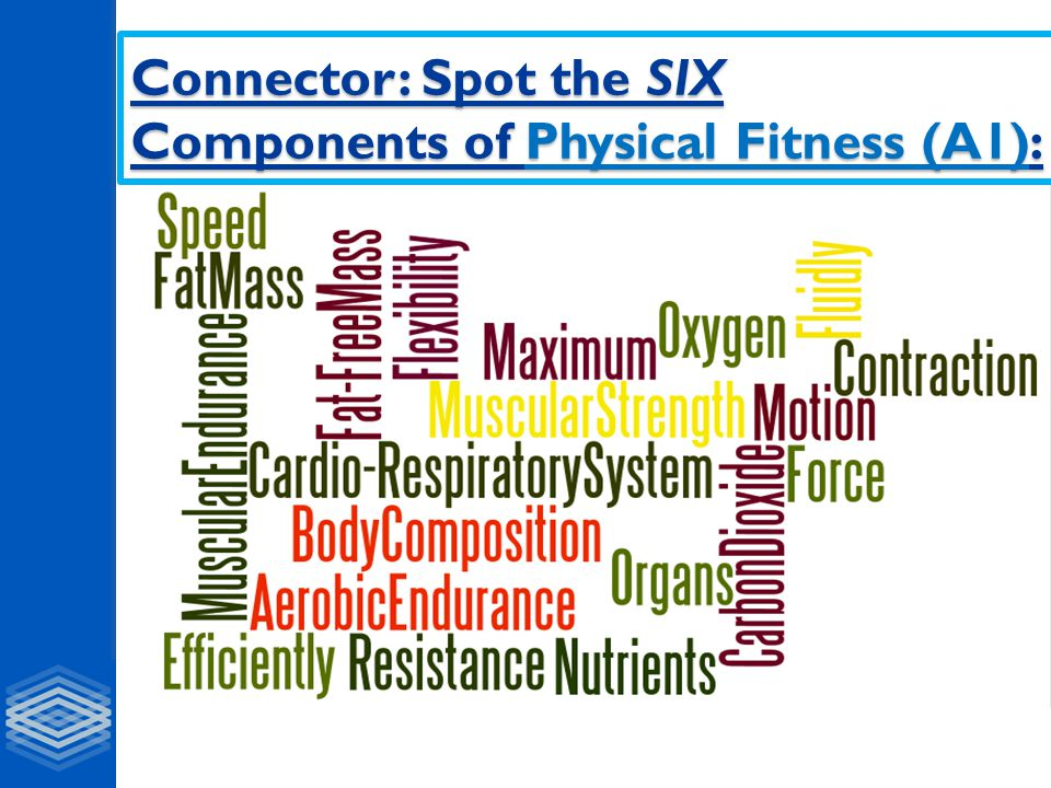 Connector: Spot the SIX Components of Physical Fitness (A1):