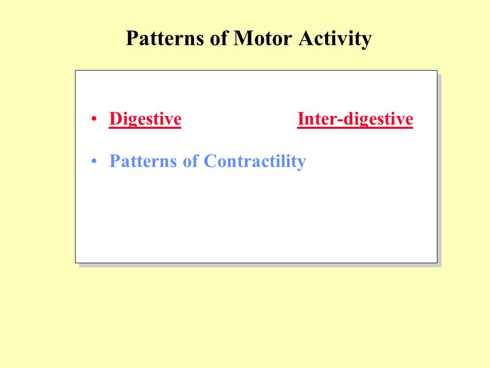 Digestive Inter-digestive Patterns of Contractility Patterns of Motor Activity
