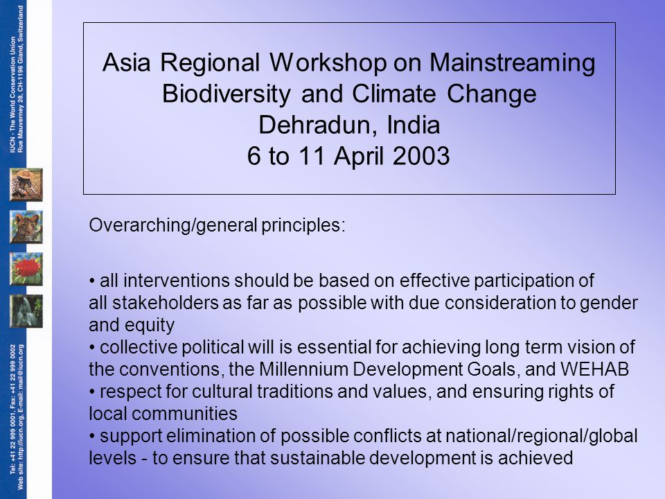 Asia Regional Workshop on Mainstreaming Biodiversity and Climate Change Dehradun, India 6 to 11 April 2003 Overarching/general principles: all interventions should be based on effective participation of all stakeholders as far as possible with due consideration to gender and equity collective political will is essential for achieving long term vision of the conventions, the Millennium Development Goals, and WEHAB respect for cultural traditions and values, and ensuring rights of local communities support elimination of possible conflicts at national/regional/global levels - to ensure that sustainable development is achieved