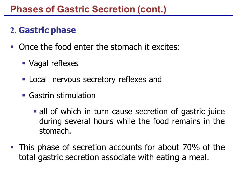 Phases of Gastric Secretion (cont.) 2.