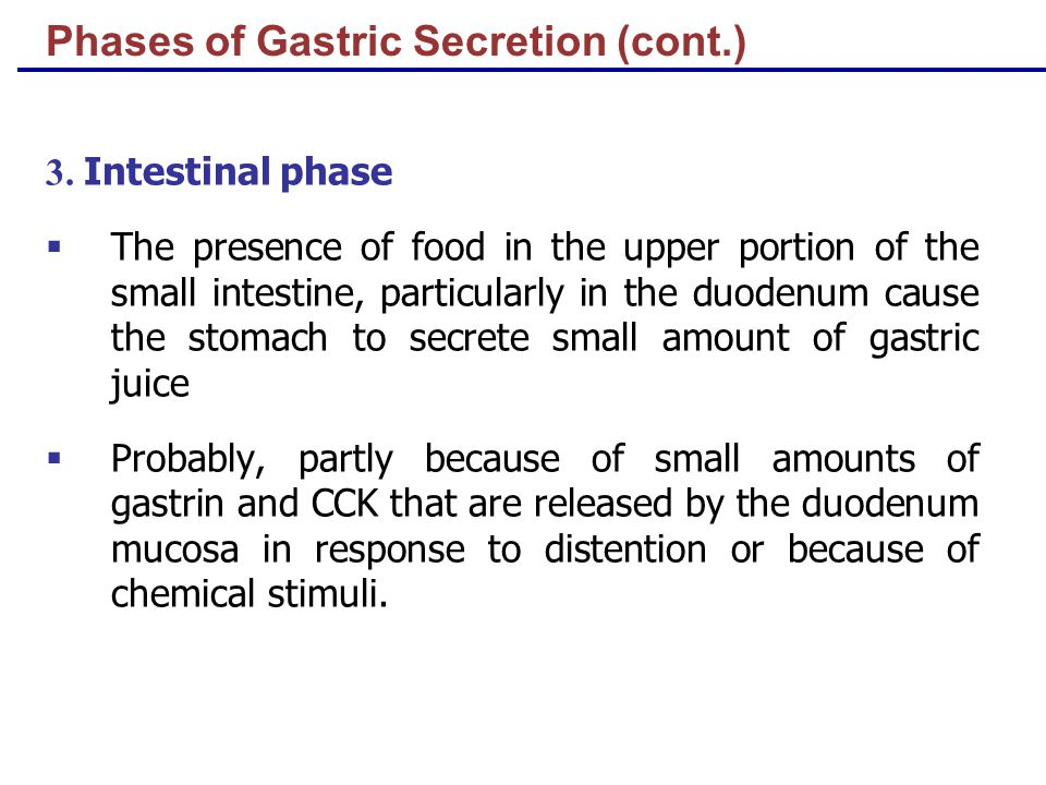 Phases of Gastric Secretion (cont.) 3.