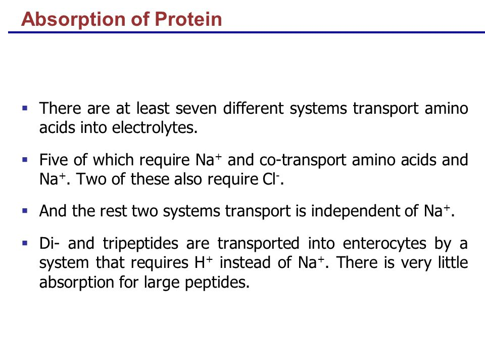 Absorption of Protein  There are at least seven different systems transport amino acids into electrolytes.