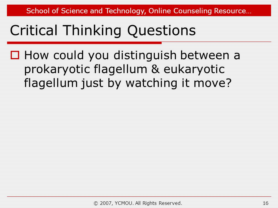 School of Science and Technology, Online Counseling Resource… Critical Thinking Questions  How could you distinguish between a prokaryotic flagellum & eukaryotic flagellum just by watching it move.