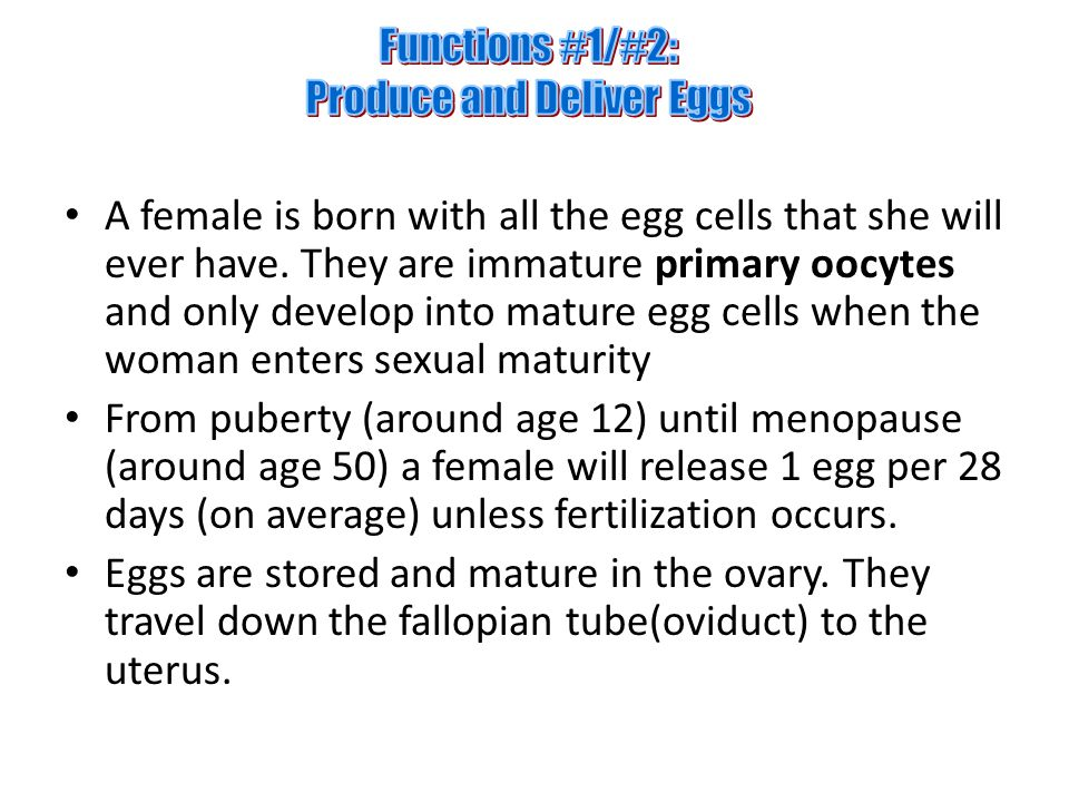 A female is born with all the egg cells that she will ever have.