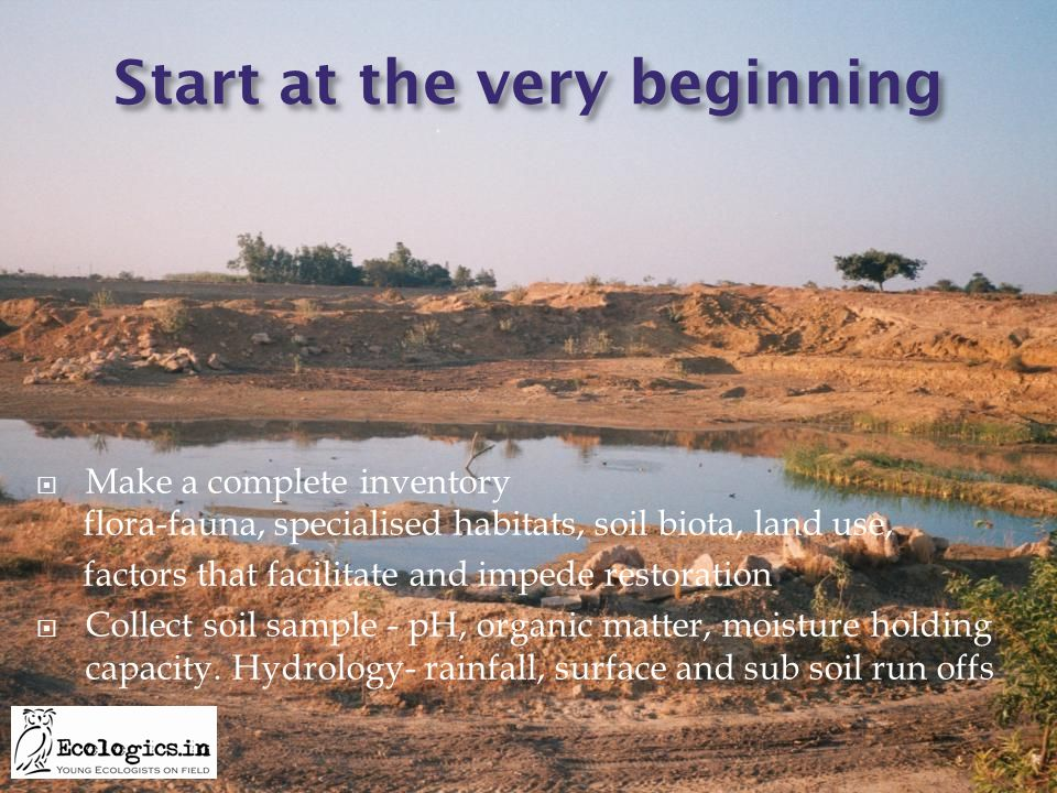 Start at the very beginning  Make a complete inventory flora-fauna, specialised habitats, soil biota, land use, factors that facilitate and impede re