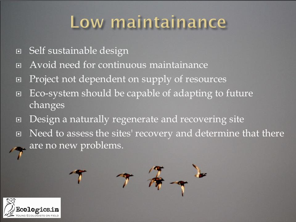  Self sustainable design  Avoid need for continuous maintainance  Project not dependent on supply of resources  Eco-system should be capable of ad