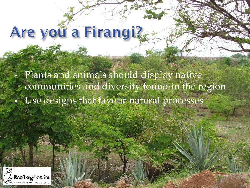  Plants and animals should display native communities and diversity found in the region  Use designs that favour natural processes