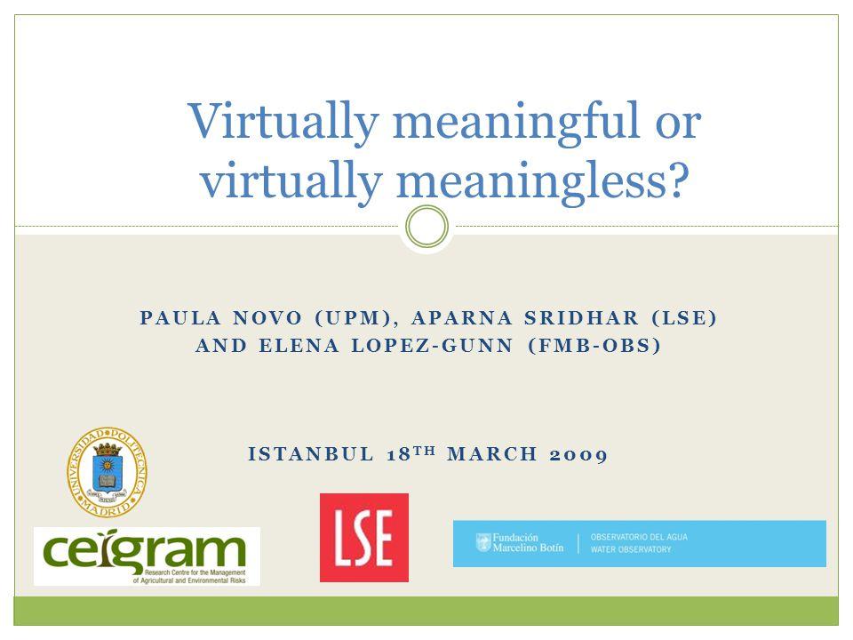 PAULA NOVO (UPM), APARNA SRIDHAR (LSE) AND ELENA LOPEZ-GUNN (FMB-OBS) ISTANBUL 18 TH MARCH 2009 Virtually meaningful or virtually meaningless