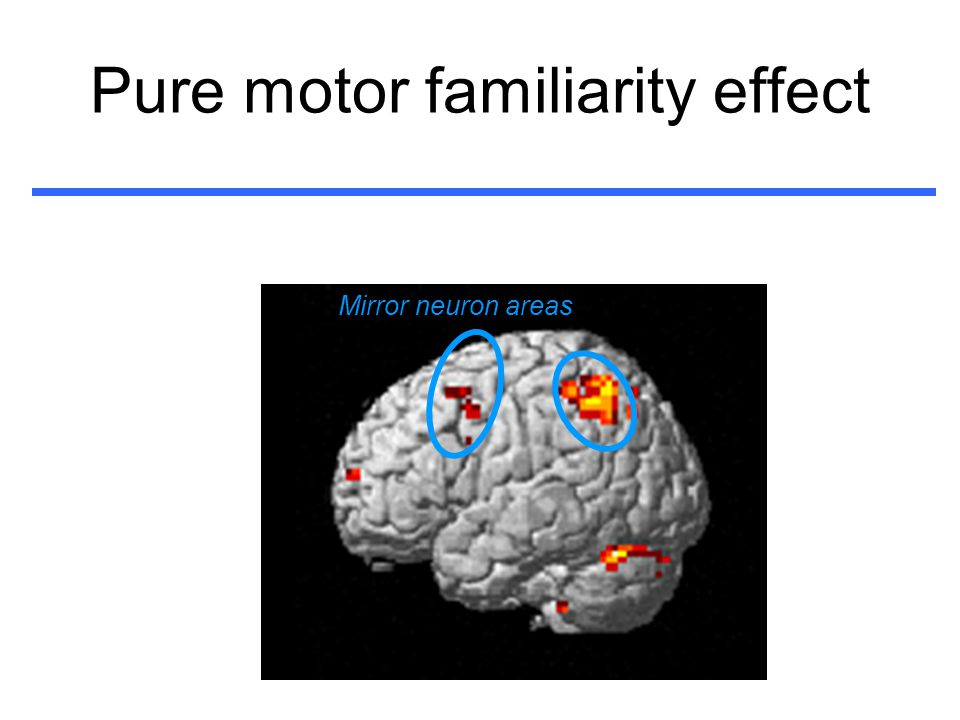 Pure motor familiarity effect Mirror neuron areas