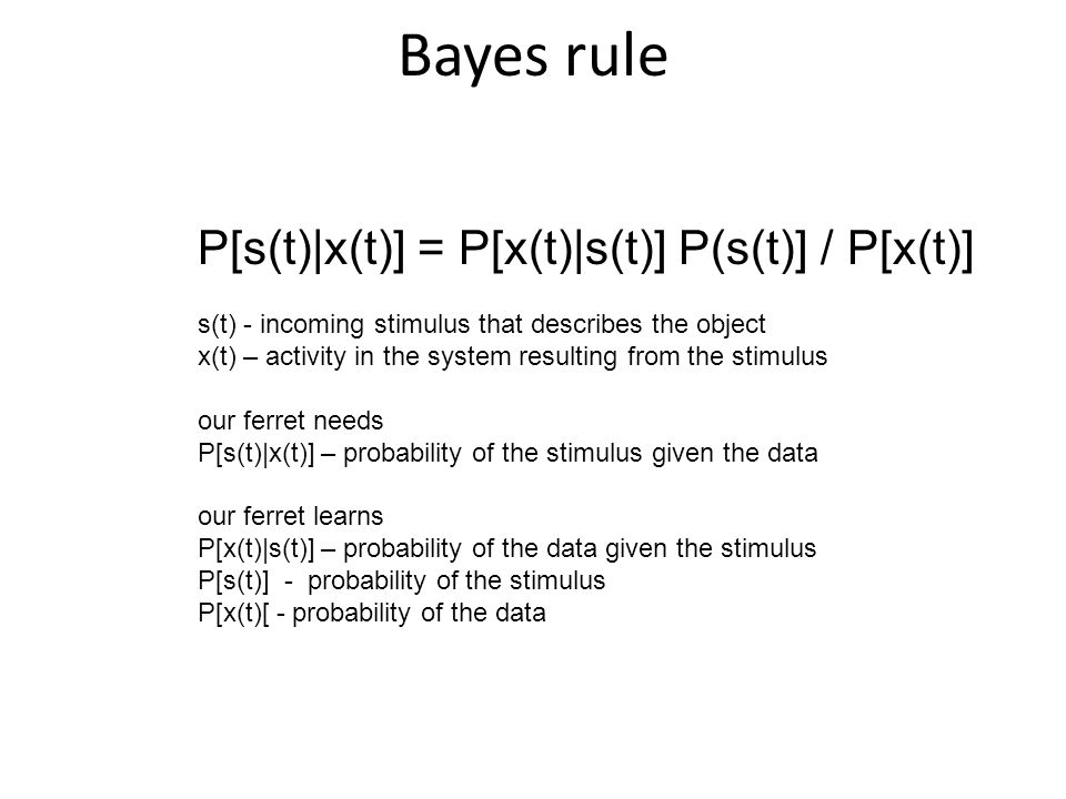 Bayes rule P[s(t)|x(t)] = P[x(t)|s(t)] P(s(t)] / P[x(t)] s(t) - incoming stimulus that describes the object x(t) – activity in the system resulting from the stimulus our ferret needs P[s(t)|x(t)] – probability of the stimulus given the data our ferret learns P[x(t)|s(t)] – probability of the data given the stimulus P[s(t)] - probability of the stimulus P[x(t)[ - probability of the data